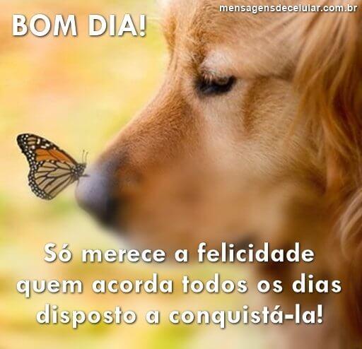 Bom Dia! Conquiste a Felicidade!