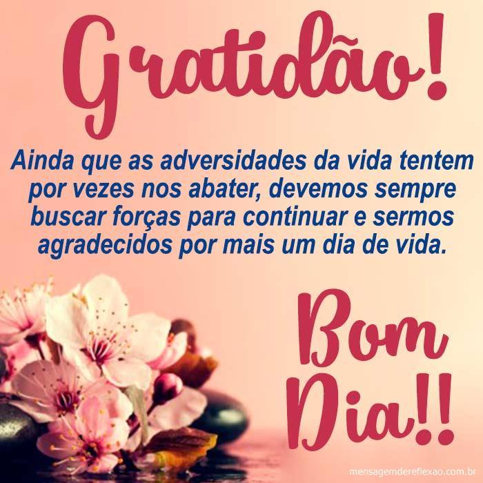 Bom Dia Cheio de gratidão