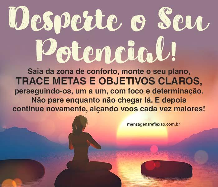 Desperte o Seu Potencial